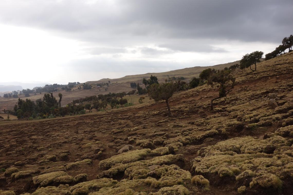 simien-mountains-alien-landscape-ethiopia