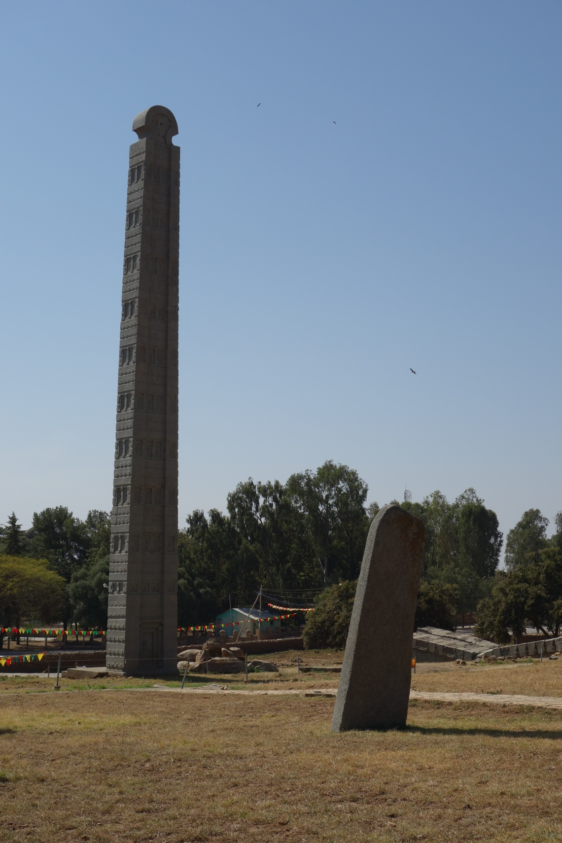 axum aksum stelae field (2)