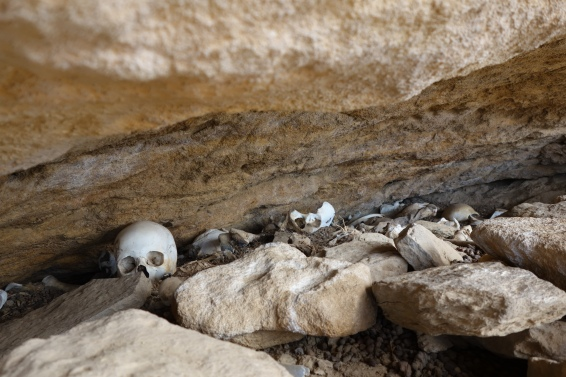 Pilgrims' skulls are scattered around the cliff.