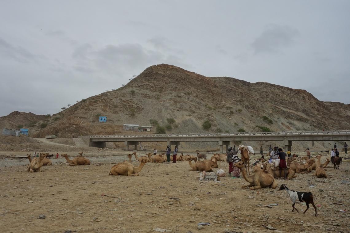 berhale market ethiopia travel blog (2)