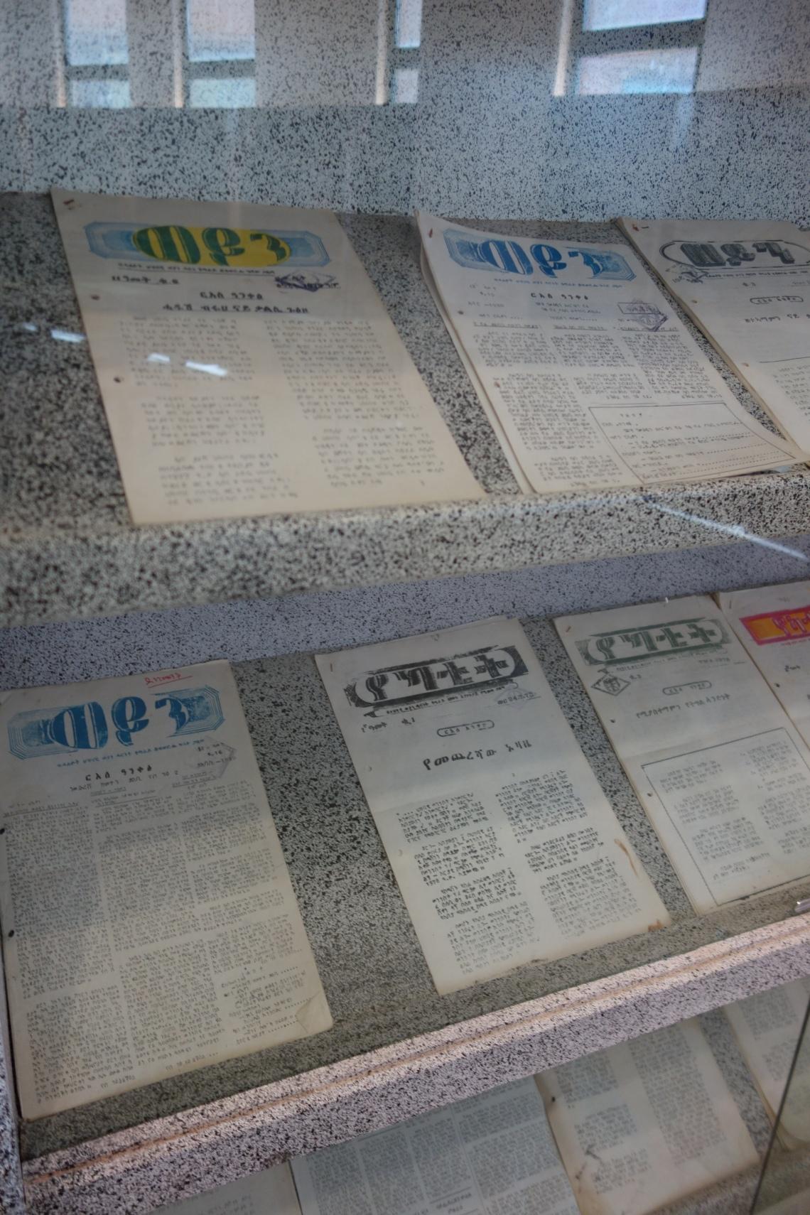 tplf propaganda newsletter mekele (2)