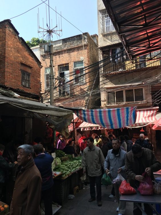 One of the many hidden wet markets in Guangzhou. This could be a scene from many developing countries but the reality is that it's in one of the most modern cities in the world.