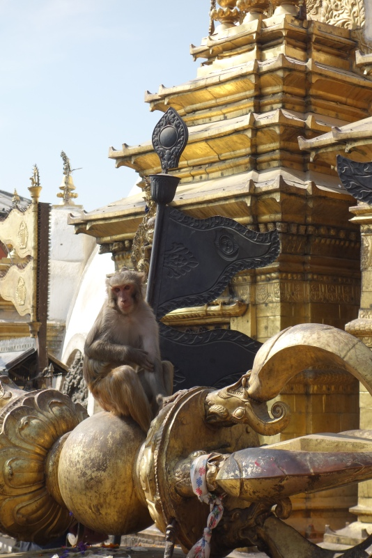 Monkeys perched on Swayambhanath.