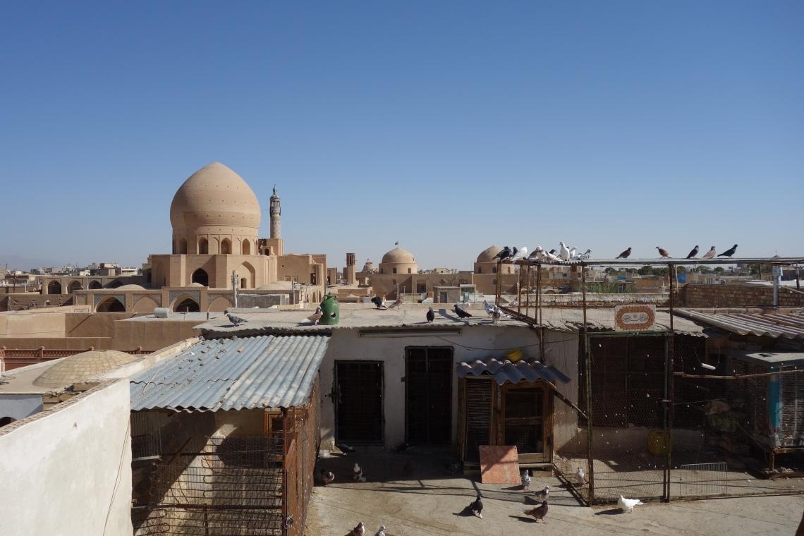 pigeons kashan rooftops iran travel blog (1)